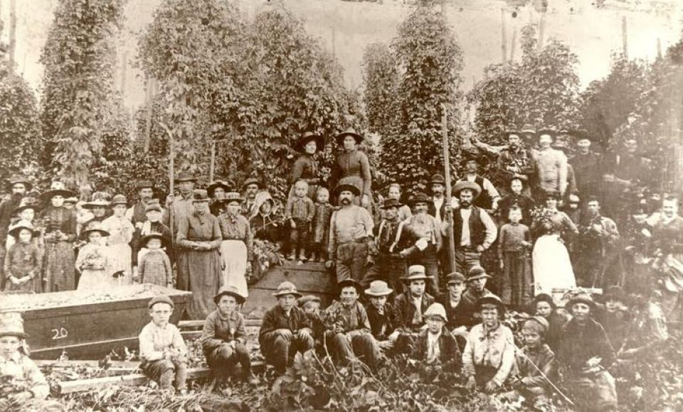 THE BROTHERHOOD OF TIMBER WORKERS 1910-1913: A RADICAL RESPONSE TO INDUSTRIAL CAPITALISM IN THE SOUTHERN U.S.A.