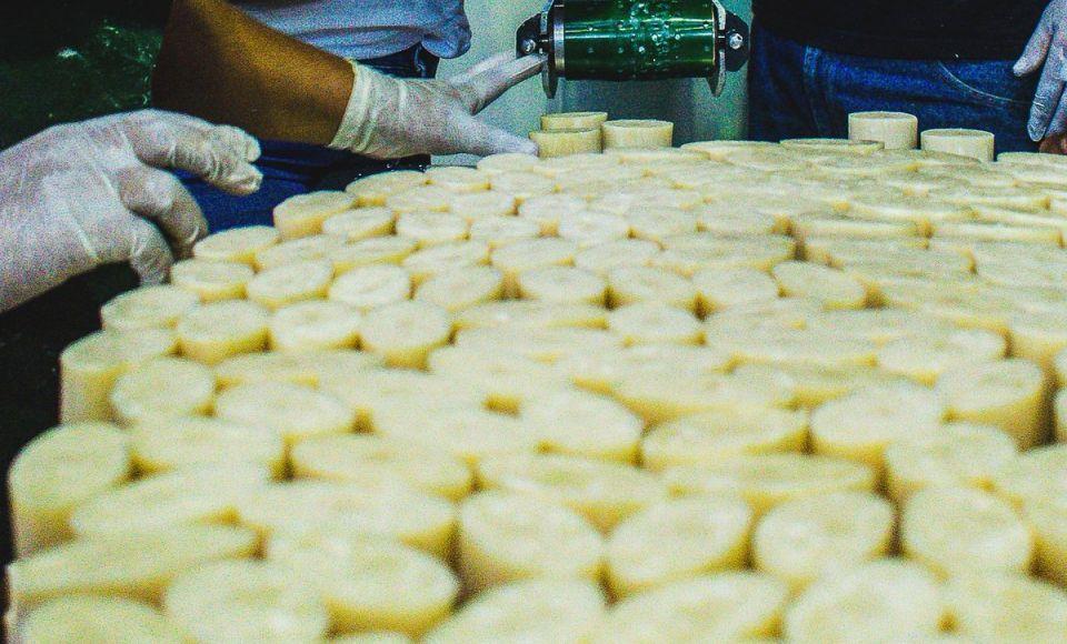 La Fábrica Mastranto, de la cooperativa Aliantec, construye economía solidaria a partir del trabajo liberador y la autogestión