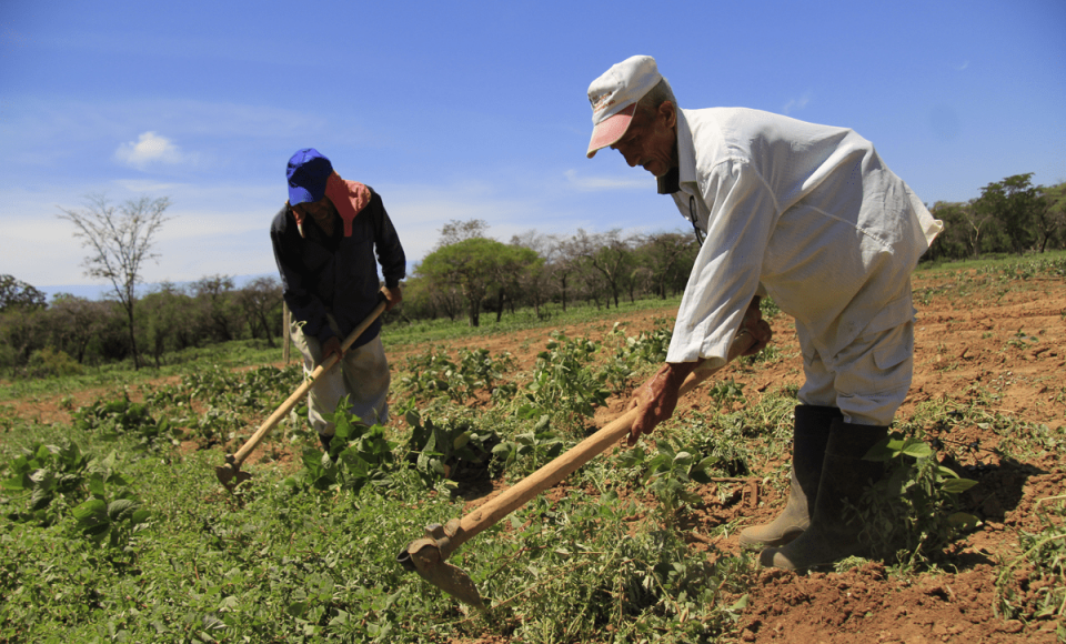 La Comuna La Esperanza construye economía solidaria a partir del trabajo liberador y la autogestión