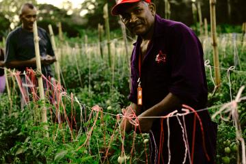 La Comuna Agraria Chávez construye economía solidaria a partir del trabajo liberador y la autogestión