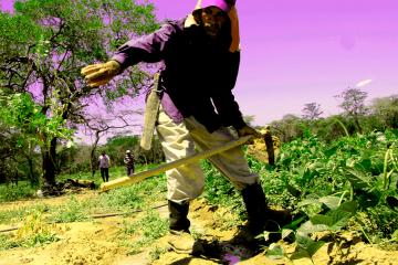La Comuna Esperanza construye economía solidaria a partir del trabajo liberador y la autogestión