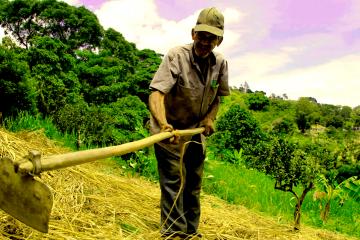 El Consejo Comunal La Magdalena, con autogestión y economía solidaria, hace del cultivo una forma de trabajo liberador.