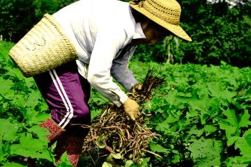 La Cooperativa Las Cañadas, mediante la autogestión, fortalece la economía solidaria e impulsa el trabajo liberador