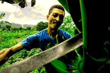El Consejo Comunal Yaguaracual II construye economía solidaria a partir del trabajo liberador y la autogestión